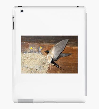 Barn Swallows iPad Case/Skin