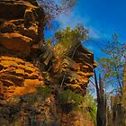 Alligator Gorge, Mt Remarkable National Park by indiafrank