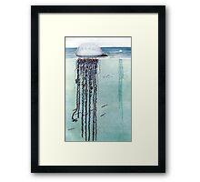 Life On The Ocean Framed Print