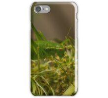 little green grasshopper iPhone Case/Skin
