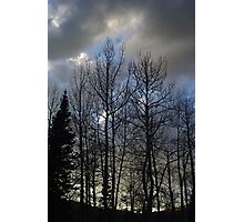 Evening Is Nigh Photographic Print