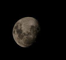 Lunar by obtriangle
