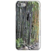 bamboo tree iPhone Case/Skin
