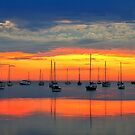Dawn light - Corio Bay by Hans Kawitzki