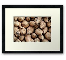 sweet potatoes Framed Print
