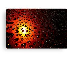 Sunlight and elegant water drops Canvas Print