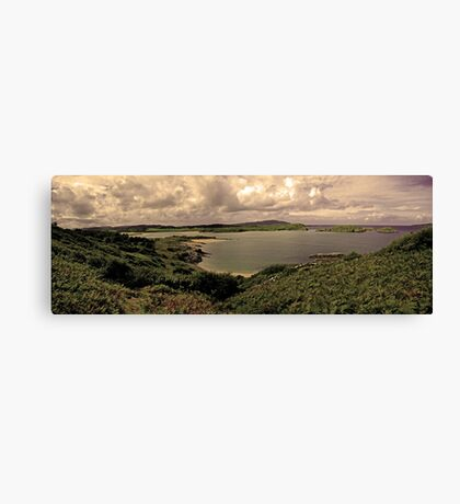 Ards Forest Park, County Donegal, Ireland Canvas Print