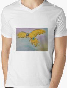 In Flight Mens V-Neck T-Shirt