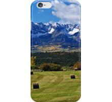 Hay With A View iPhone Case/Skin
