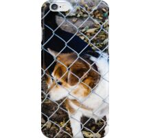 Behind the Fence iPhone Case/Skin
