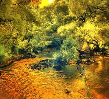 Donnelly River, Western Australia by BigAndRed