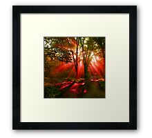 A parting Of The Ways Framed Print