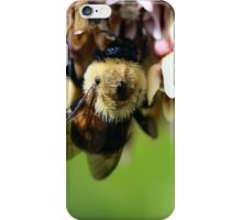 Bee on the Bottom iPhone Case/Skin