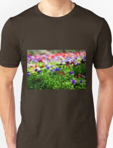 A field of cultivated colourful and vivid Anemone flowers. Photographed in Israel Unisex T-Shirt