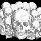 Skull & Roses by ickiskull
