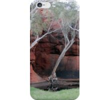 Durba Springs WA iPhone Case/Skin