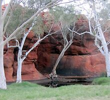 Durba Springs WA by gillsart