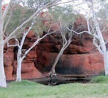 Durba Springs WA by gillsart
