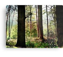 Norfolk Treescape .. Metal Print