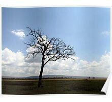 Kenyan Landscape Poster