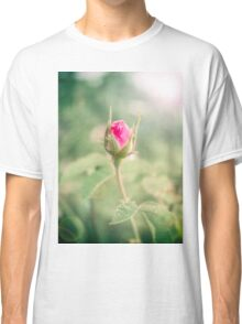 Rosebud on the Branch in the Garden Classic T-Shirt