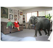 I know you always avoid conflict, but seriously, we really should address the elephant in the room. Poster