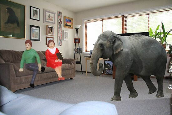 I know you always avoid conflict, but seriously, we really should address the elephant in the room. by Susan Littlefield