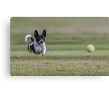 Chasing ball Canvas Print
