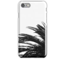 Palm Tree In Bw iPhone Case/Skin