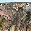 Yellowstone National Park by AnnDixon