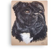 Staffordshire Bull Terrier dog Canvas Print