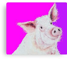 Pig painting on purple and pink Canvas Print