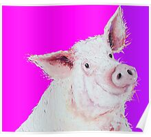 Pig painting on purple and pink Poster