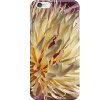 Spring Peony,  iPhone Case/Skin