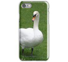 Irish Swan iPhone Case/Skin