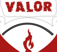 Property of Team Valor Sticker