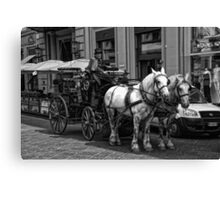 Horse Drawn Carriage Canvas Print