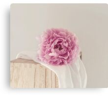 Moments of Pink Canvas Print