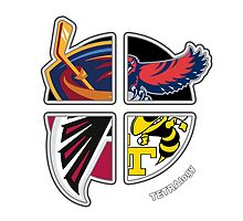 Altanta Pro Sports TETRAlogy! Atlanta Falcons (NFL), Atlanta Hawks (NBA), Atlanta Thrashers (NHL) and Georgia Tech Yellowjackets by Sochi