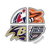 Baltimore / Washington D. C. Area Pro Sports TETRAlogy! Baltimore Orioles, Ravens, Washington Wizards and Washington Capitals by Sochi