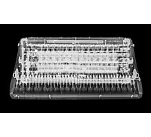 X-ray of an Accordion on black background  Photographic Print