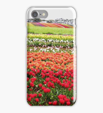 Bands of beauty iPhone Case/Skin