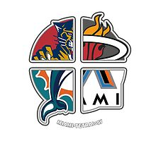 Miami Florida Pro Sports TETRAlogy! Dolphins, Marlins, Panthers and Heat by Sochi