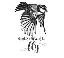Don't Be Afraid To Fly Photographic Print