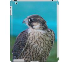 Saker Falcon iPad Case/Skin