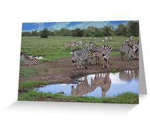Grant's Zebras and Reflection Greeting Card