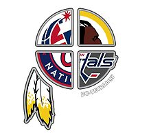 Washington DC Area Pro Sports TETRAlogy! Washington Redskins, Nationals, Wizards and Capitals by Sochi