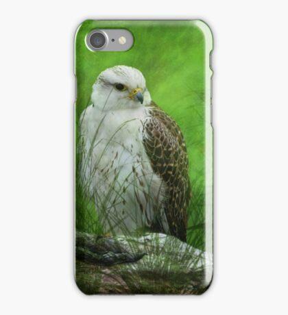 Gyr x Saker  Falcon  iPhone Case/Skin
