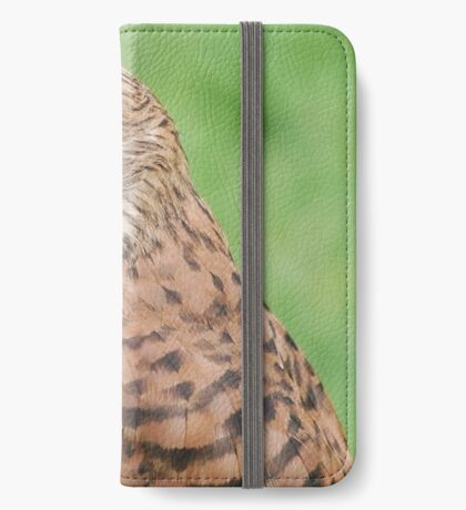 kestrel iPhone Wallet/Case/Skin