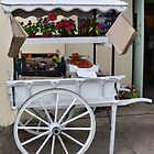 Fruit and Flower Display Cart........... by lynn carter